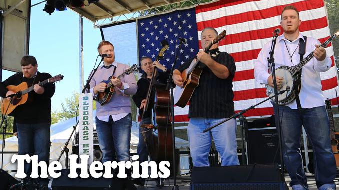 The Herrins
